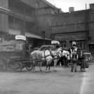 Photo:Stag Brewery loading dock in Palace Street, showing delivery horses, 1958